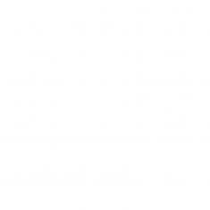 "FETISH FANTASY SERIES 7"" HOLLOW STRAP-ON WITH BALLS 17.8CM FLESH - 6"