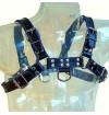 METAL HARD CHEST BULLDOG HARNESS BLACK/BLUE LEATHER - 1