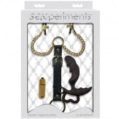 SEXPERIMENTS GOLDEN OPPORTUNITIES - 1